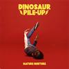 Dinosaur Pile-Up / Nature Nurture(Japan Edition)
