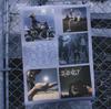 SOPHIA / 20th ANNIVERSARY BEST 2 YOUNG ADULT(2001-2007) [SHM-CD] [アルバム] [2014/11/05発売]