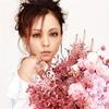NAMIE AMURO / BRIGHTER DAY [CD+DVD]