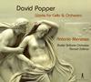 ポッパー:チェロ協奏曲、森のなかで、小品さまざま メネセス(VC) ゾルマン / バーゼルso. [デジパック仕様]