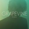 GRAPEVINE / Burning tree [CD+DVD] [限定] [CD] [アルバム] [2015/01/28発売]