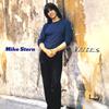 マイク・スターン / ヴォイセズ [限定] [CD] [アルバム] [2015/03/25発売]