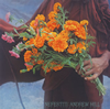 アンドリュー・ヒル / ネフェルティティ [限定] [CD] [アルバム] [2015/02/04発売]