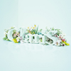 ClariS / ClariS〜SINGLE BEST 1st〜 [Blu-ray+CD] [限定]