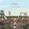 04 Limited Sazabys / CAVU