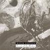 デヴィッド・シルヴィアン / シークレッツ・オブ・ザ・ビーハイヴ [SHM-CD] [アルバム] [2015/04/08発売]