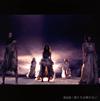 AKB48 / 僕たちは戦わない(Type B) [CD+DVD] [限定]