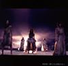 AKB48 / 僕たちは戦わない(Type B) [CD+DVD]