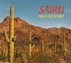 SAIRU / NOW OR NEVER