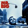 MR.BIG / バンプ・アヘッド [再発] [CD] [アルバム] [2015/06/24発売]