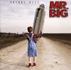 MR.BIG / アクチュアル・サイズ [再発] [CD] [アルバム] [2015/06/24発売]