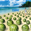 TUBE / SUMMER TIME [CD] [シングル] [2015/06/02発売]