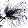 ザ・スモール・スクエア / ザ・スモール・スクエア [CD] [アルバム] [2015/06/24発売]