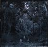 COHOL、2ndアルバム『裏現』から初のミュージック・ビデオを公開