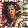 ジギー・マーリー&ザ・メロディ・メイカーズ / コンシャス・パーティー [SHM-CD] [限定] [アルバム] [2015/07/01発売]