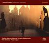 ドヴォルザーク:ヴァイオリン協奏曲、ソナチネおよびその他のヴァイオリン作品 イルンベルガー(VN) アルトリフテル / プラハ・フィルハーモニア カシュパル(P)