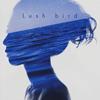 bird / Lush [CD] [アルバム] [2015/11/04発売]