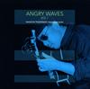 高柳昌行 / アングリー・ウェーブス VOL.1 [2CD] [CD] [アルバム] [2016/02/27発売]