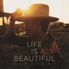 平井大 / Life is Beautiful [CD+DVD]