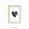 nano.RIPE / スノードロップ [CD+DVD] [限定] [CD] [シングル] [2016/08/03発売]