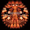 SWARRRM / 20 year chaos [CD] [アルバム] [2016/06/29発売]