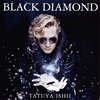 石井竜也 / BLACK DIAMOND [CD] [アルバム] [2016/08/31発売]