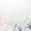 CHIHEI HATAKEYAMA+HAKOBUNE / THE FALL RISES [紙ジャケット仕様] [CD] [アルバム] [2016/09/14発売]