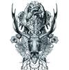 BiS / Re:STUPiD [CD] [アルバム] [2017/02/22発売]