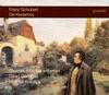 シューベルト:ピアノ三重奏曲(全 第1・2番 / ノットゥルノ / ソナタ楽章) コルシュティック(P) イルンベルガー(VN) ゲリンガス(VC) [出荷終了]