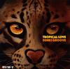 電気グルーヴ / TROPICAL LOVE [廃盤]