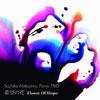 中島さち子Piano Trio / 希望の花-Flower Of Hope- [2CD]