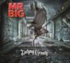 MR.BIG / ディファイング・グラヴィティ [CD+DVD] [CD] [アルバム] [2017/06/21発売]