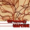 グレイプバイン / プラチナムベスト グレイプバイン〜クロノロジー [UHQCD] [アルバム] [2017/07/19発売]