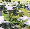 スキマスイッチ / ミスターカイト / リチェルカ [CD] [シングル] [2017/09/13発売]