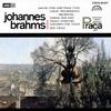 ブラームス:ヴァイオリンとチェロのための二重協奏曲 / 悲劇的序曲 スーク(VN) ナヴァラ(VC) アンチェル / チェコpo. [UHQCD] [アルバム] [2017/12/20発売]