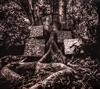 カマシ・ワシントン / ハーモニー・オブ・ディファレンス [デジパック仕様] [CD] [アルバム] [2017/09/22発売]