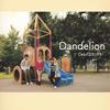 じゃんぐるカンガルー、1stシングル「Dandelion」をリリース フリー・ライヴ開催