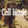 Teruyuki Oshima / Cell Music [紙ジャケット仕様] [CD] [アルバム] [2017/12/06発売]