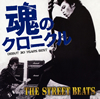 THE STREET BEATS - 魂のクロニクル DEBUT 30 YEARS BEST [2CD]