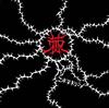 コドモドラゴン / 棘(Ctype)