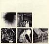 ナイン・インチ・ネイルズ / バッド・ウィッチ [紙ジャケット仕様]  [CD] [アルバム] [2018/06/22発売]