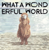 YASUYUKI HORIGOME / What A Wonderful World