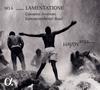 ハイドン2032 第6集-ラメンタツィオーネ アントニーニ / バーゼルco. [デジパック仕様] [CD] [アルバム] [2018/06/29発売]