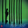 峰厚介 / バンブー・グローヴ [CD] [アルバム] [2019/01/23発売]