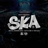 "TOKYO SKA PARADISE ORCHESTRA / 2018 Tour「SKANKING JAPAN」""スカフェス in 城ホール""2018.12.24 [紙ジャケット仕様] [2CD+2DVD] [限定] [CD] [アルバム] [2019/03/13発売]"