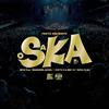 "TOKYO SKA PARADISE ORCHESTRA / 2018 Tour「SKANKING JAPAN」""スカフェス in 城ホール""2018.12.24 [紙ジャケット仕様] [Blu-ray+2CD] [限定] [CD] [アルバム] [2019/03/13発売]"