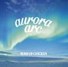 BUMP OF CHICKEN / aurora arc [CD+DVD] [限定]