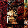 Merzbow / Environmental Percussion Vol.1 [紙ジャケット仕様] [CD] [アルバム] [2019/04/19発売]