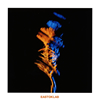 EASTOKLAB - EASTOKLAB [CD]