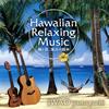 山口岩男(IWAO yamaguchi) - ハワイアン・リラクシング・ミュージック〜風と波,海辺の散歩〜 [CD]